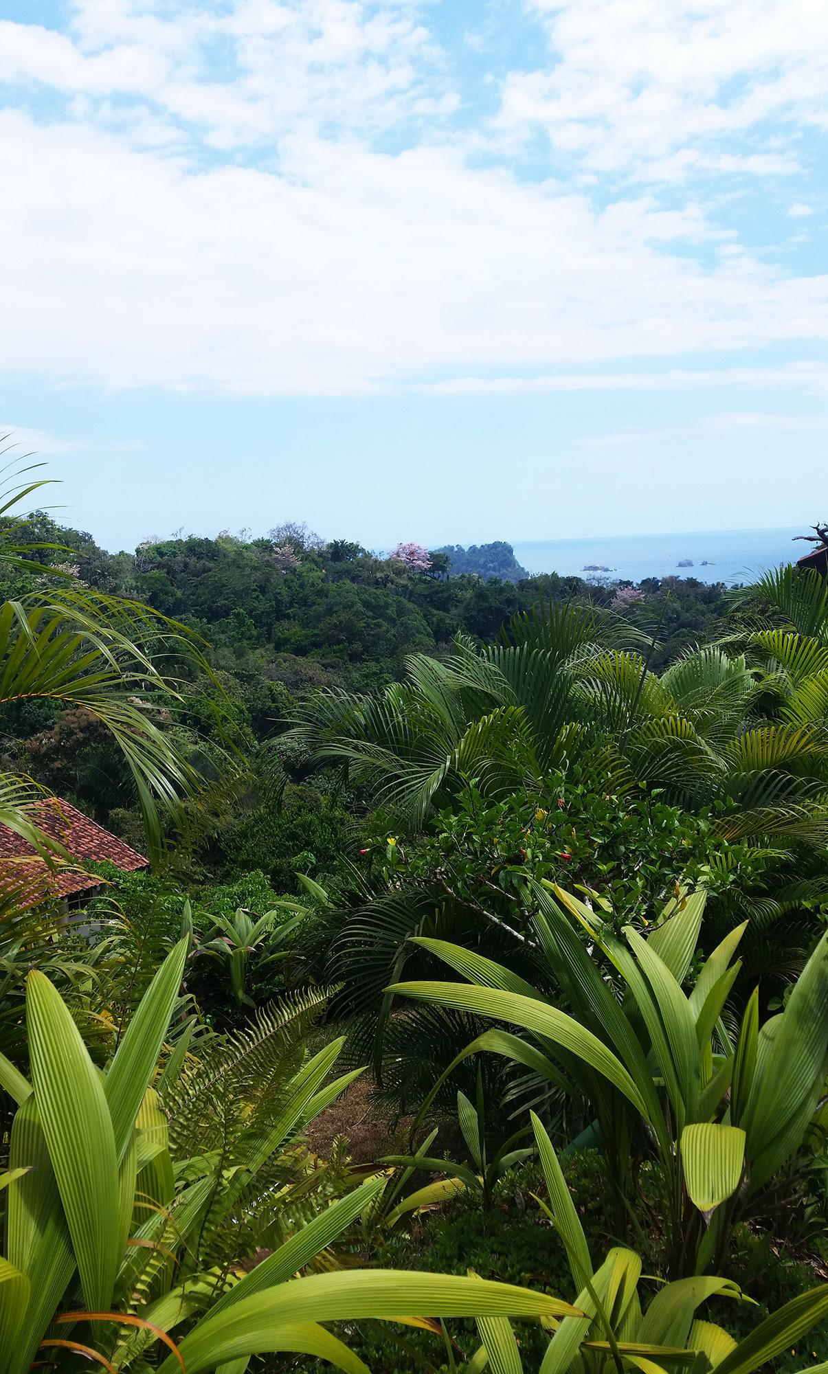 voyage-costa-rica-manuel-antonio-28